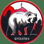 morfee-grizzlies