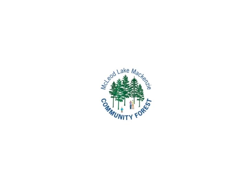 mlmcf logo 2
