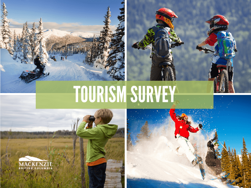 tourism survey