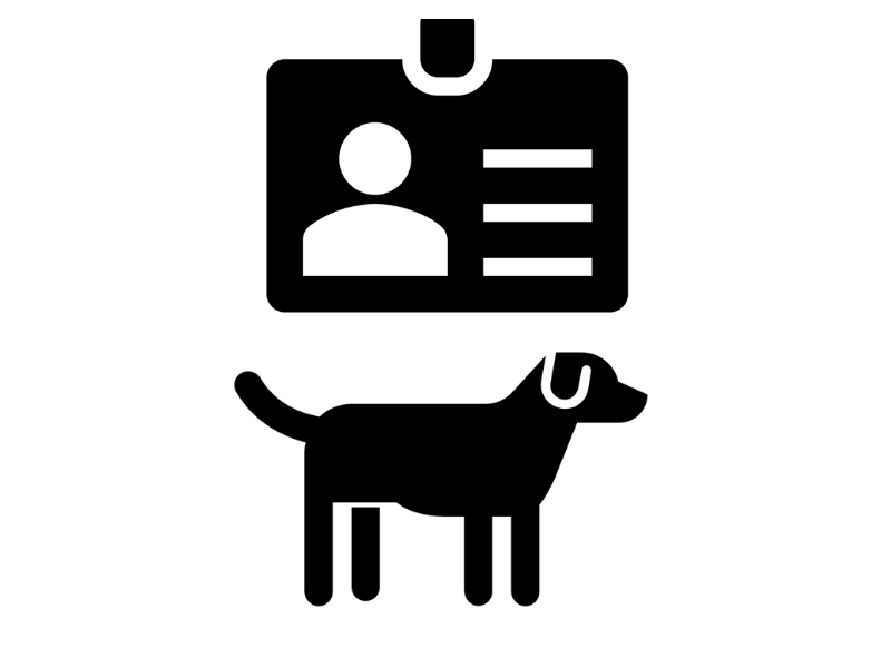 License and Dog Icons