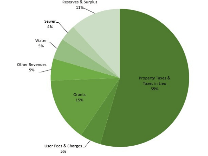 Pie chart with categories for revenues and percentages